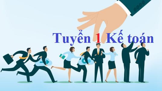 Công ty Cổ phần Thương Mại Phú Thái Hà Nội Tuyển nhân viên kế toán